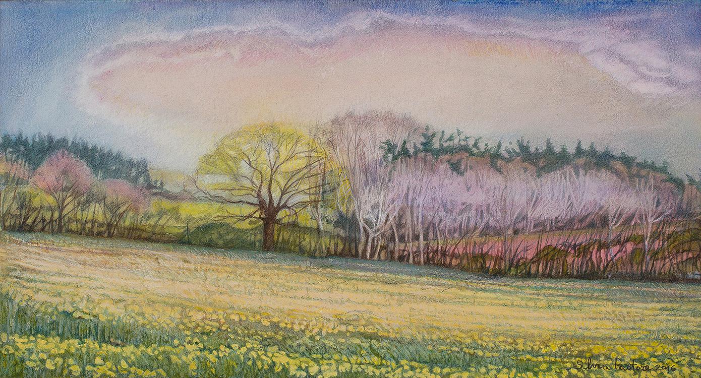 View Behind Barnfield Farm